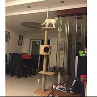 (NEW!)$75 Ceiling Cat Tree Condo Pole