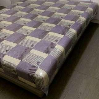 5X6. 標準雙人床 含床座組 全新沒人用