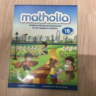 Matholia Math Assessment Book 1B