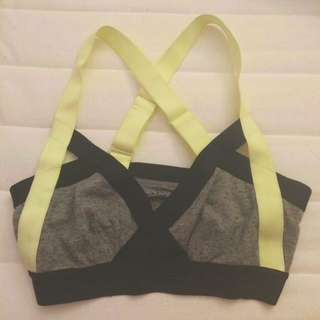 Aritzia Colour Block Bra