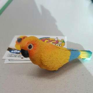 鸚鵡 扭蛋