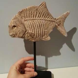 Replica Fish Fossil
