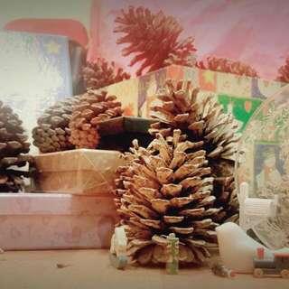 松果 聖誕秋冬的最佳飾品