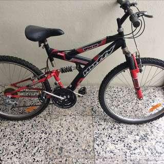 3x Bikes