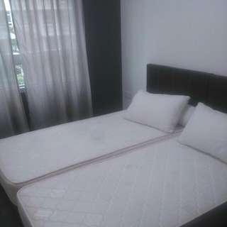 Jalan Kayu / Fernvale LRT Common Bedroom For Rent Near Fernvale LRT / Sengkang MRT And Seletar Mall