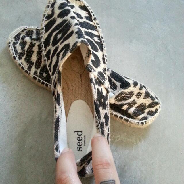 2x BNWT SEED brand shoes