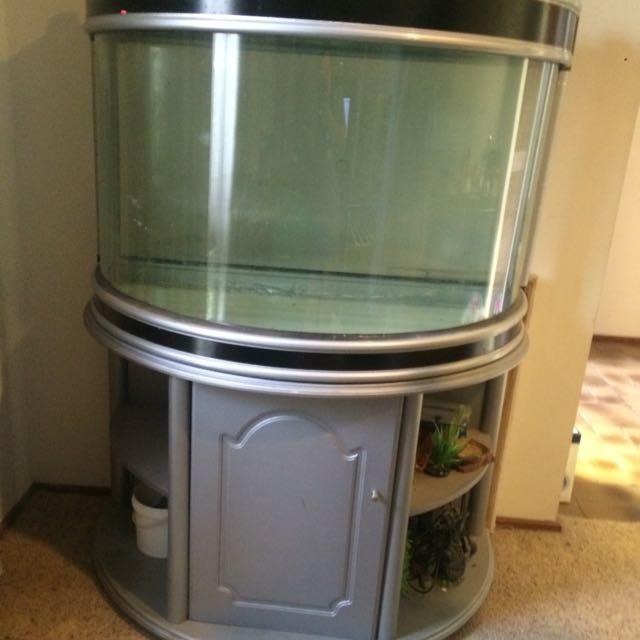 Turtle/ Fish Tank