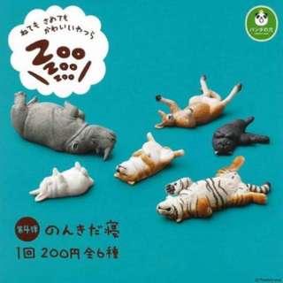 休眠動物園4 犀牛*2 老虎*1 袋鼠*1