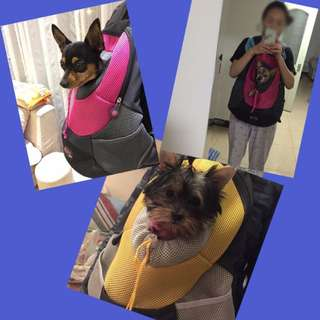Portable Pet Travel Carrier (Type 2)