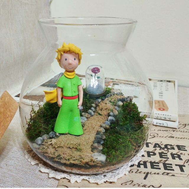 Msg 11 The Little Prince And His Rose Closed Terrarium With Led
