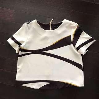 Zara Basic Cropped Top (s)