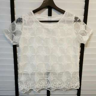 Embroidered Lace Mesh Top