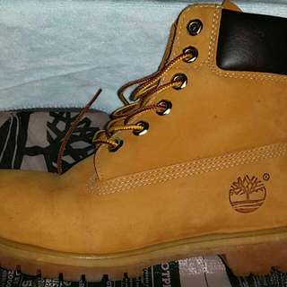 Timberland boots wheat with box