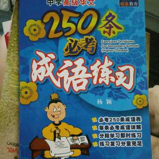 Higher Chinese Idiom Exercises