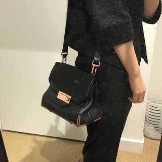 Authentic Alexander Wang Bag