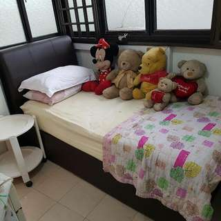 Toa PAYOH Bedspace In Utility Room