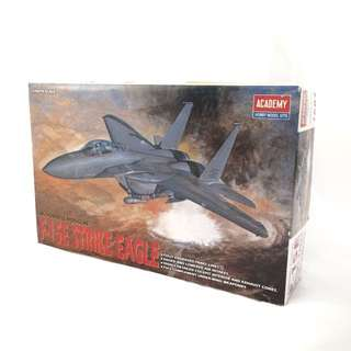 F-15E Strike Eagle Model Kit