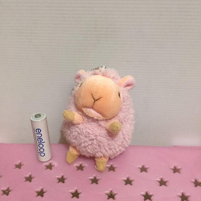 ALCAPASSO SHEEP