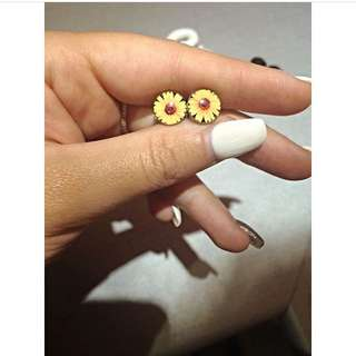 0G Sunflower plugs
