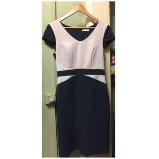 Target Work Dress -size 10