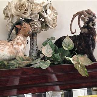 Two Goats And A Horse Decor