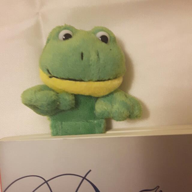 Frog Bookmark