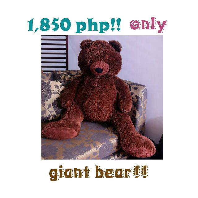 Giant Bear!!
