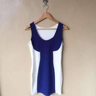 Blue & White Fitted Dress