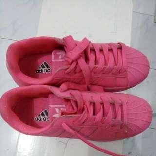 Superstar Adidas Pink