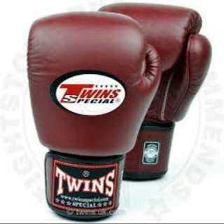 Twins Muay Thai Glove