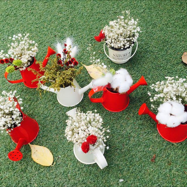 乾燥花小花盆