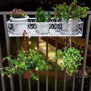 Balcony/Parapet Railings Racks for plants flower pots 盆栽架