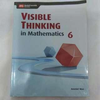 Visible Thinking In Mathematics P6