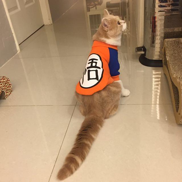 寵物衣服-悟空