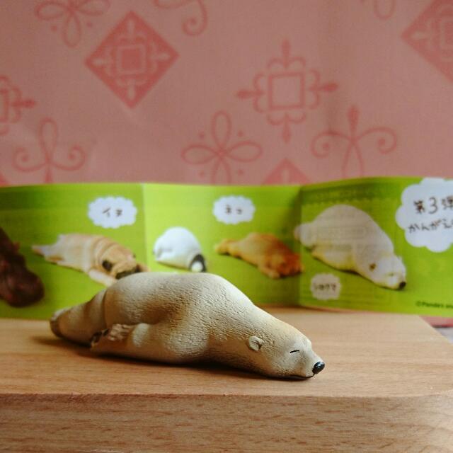 全新 扭蛋 ZOO 休眠 睡眠動物 睡眠動物園 趴睡 北極熊