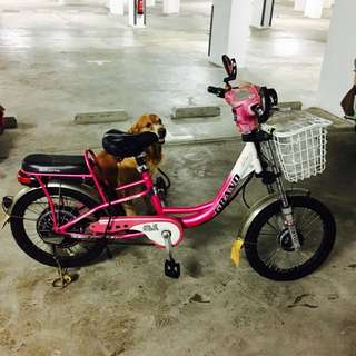 Pink E Bike With Basket And Backseat