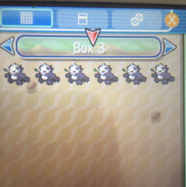 6 Combat Ready Pangoros For Pokemon Sun And Moon