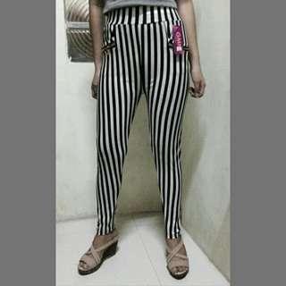 Elegant Stripe Print Basic Pants Stretchable