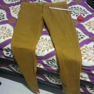 Coffee Long Pants