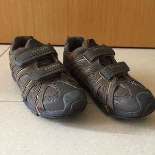 Geox Sports Boys Shoes