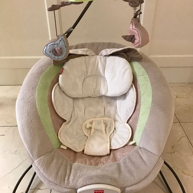 Fisher-Price Deluxe BabyBouncer