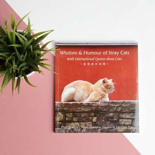 Wisdom & Humor of Stray Cats Coffee Book