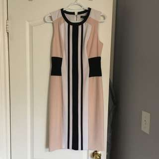 BCBG Nude Black & White Dress