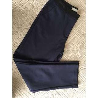 Forcast Pants