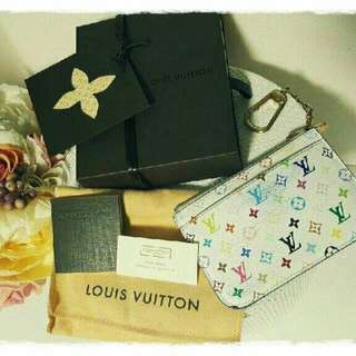 Louis Vuitton Multicolour Pochette Coin Purse