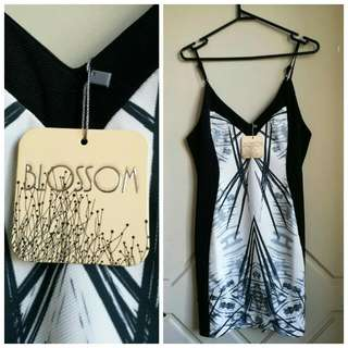Size 10 Dress New With Tag