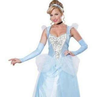 Cinderella dress/custom - Brand NEW!!!