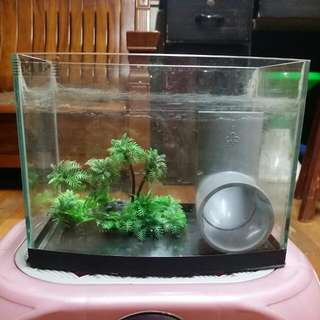 造型魚缸組-附小石頭