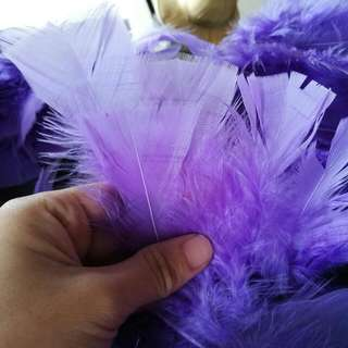 Purple Feathers 16cm