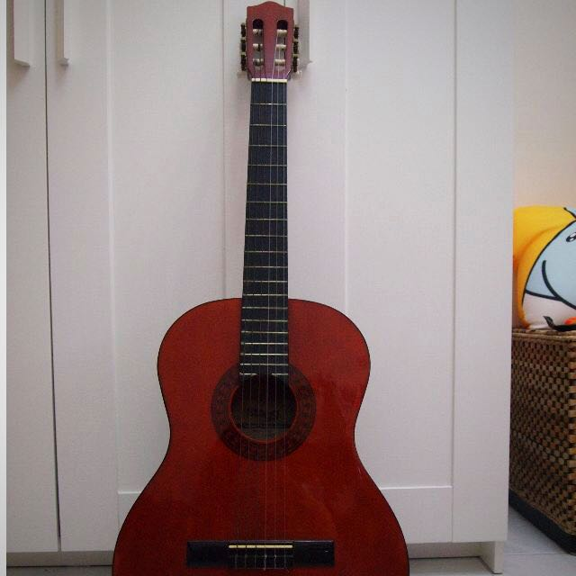 Guitar Stagg C542